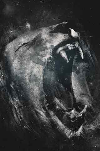 狮子的怒吼手机桌面壁纸下载