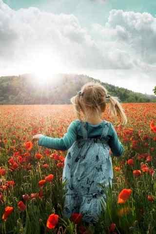 在满地红花的草地