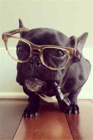戴眼镜叼着烟斗的