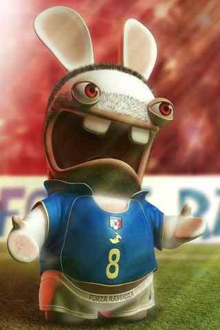 足球场上的胡渣兔