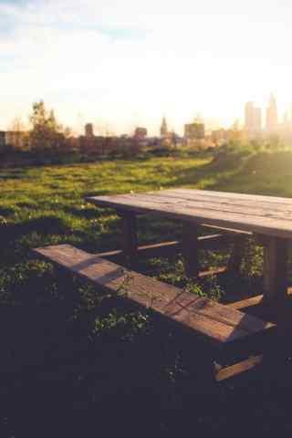 草地上的餐椅风景