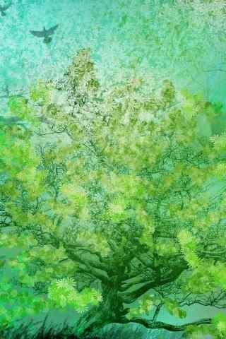 绿色护眼手机壁纸-森林的大树