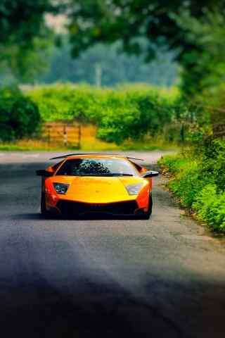 乡间马路上的橙色