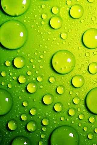 绿色高清的水珠写真手机桌面