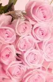 粉红|浪漫的粉红
