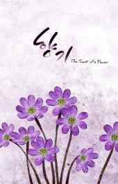 花朵|紫色花朵插