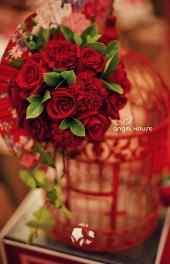 玫瑰|玫瑰图片高
