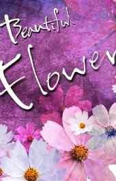 非主流|花朵信纸