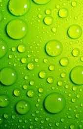 唯美清新绿色水珠