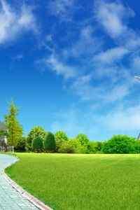 綠色護眼自然風景高清手機壁紙圖集