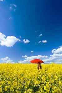 唯美意境蓝天白云