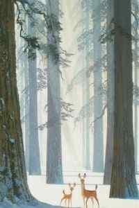 森林麋鹿童话插画