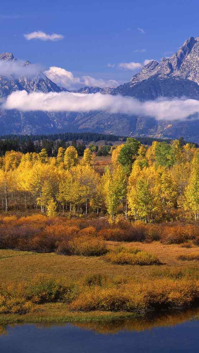 大自然美景图片绿色护眼手机壁纸图集
