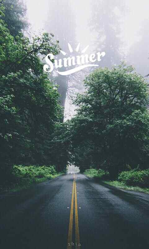 森林风景简约文字图片高清手机壁纸图片