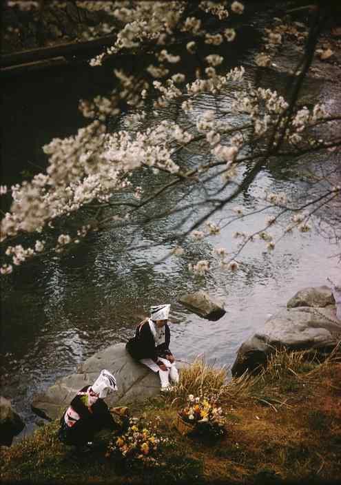 日本印象摄影高清手机壁纸