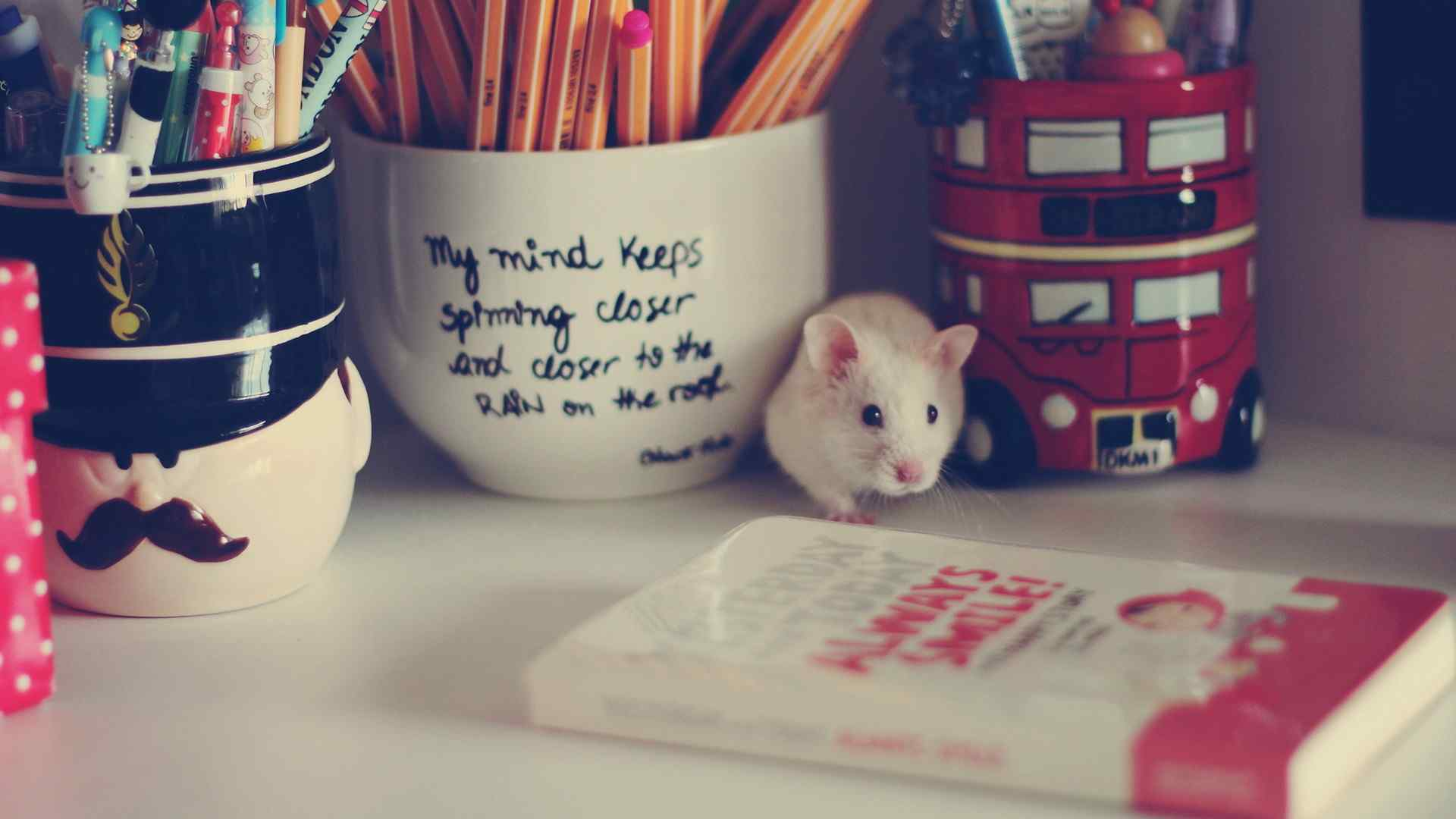 搞笑小白鼠可爱宽屏电脑壁纸