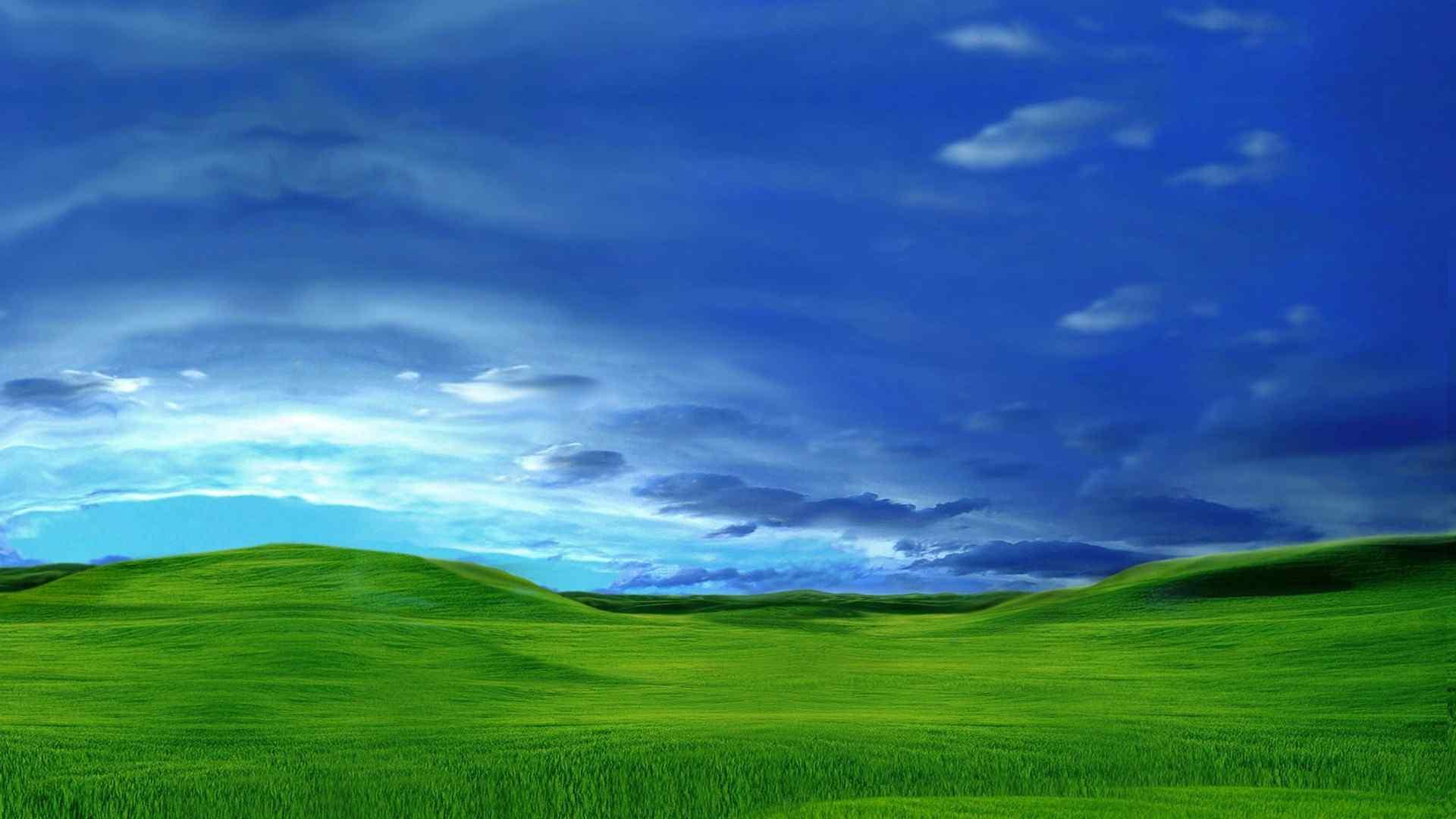 绿色草地蓝色天空壁纸下载