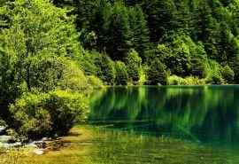 高清绿色自然风景