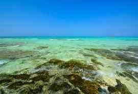 西沙銀嶼島風景高