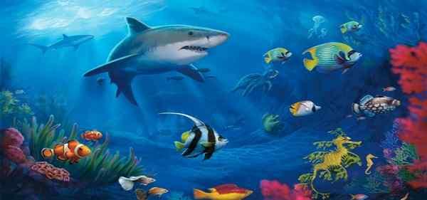 这款海底世界屏幕保护中,是精美的动态的海底世界壁纸,展现了海水中