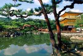 日本之风特色文化