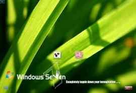 清新绿叶XP登陆界面