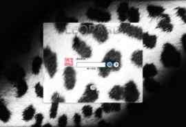 流行元素豹纹XP登录界面