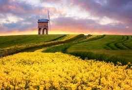 美丽的草原风景清新怡人电脑桌面壁纸图片