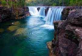水上森林溪流美景