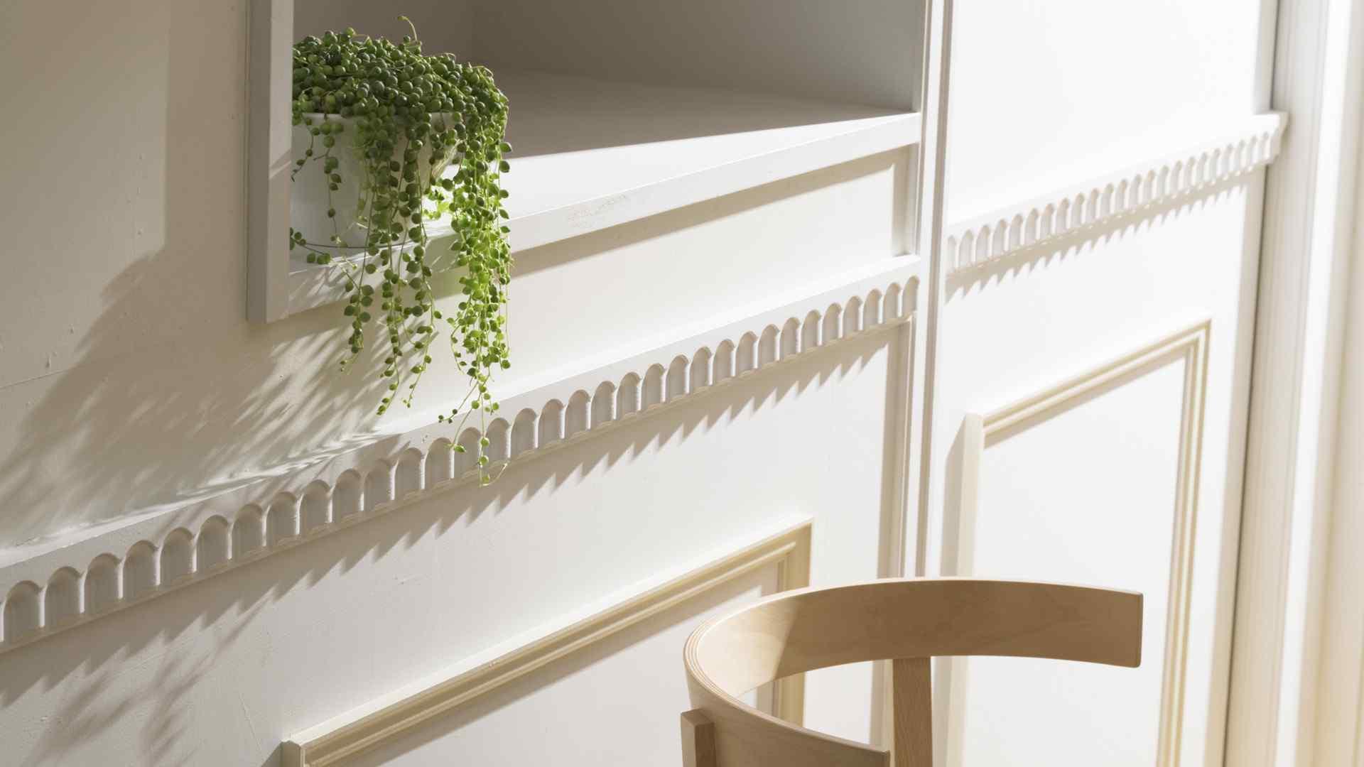 室内清新盆栽植物摄影桌面壁纸