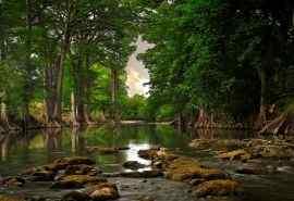 美丽的大自然森林溪水风景桌面壁纸