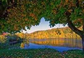德国乌尔门绿叶变黄秋天风景电脑壁纸