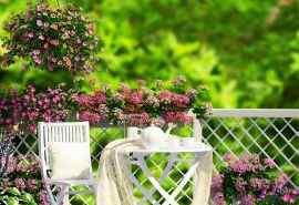 唯美花园别墅花团景簇图片桌面壁纸