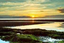 清新早晨唯美日出自然风光美景高清桌面壁纸图片大全
