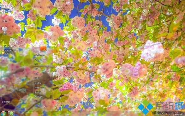春天的花朵唯美win7系统主题