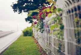 艺术围栏风景高清