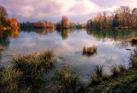 池塘湖水秋季风景