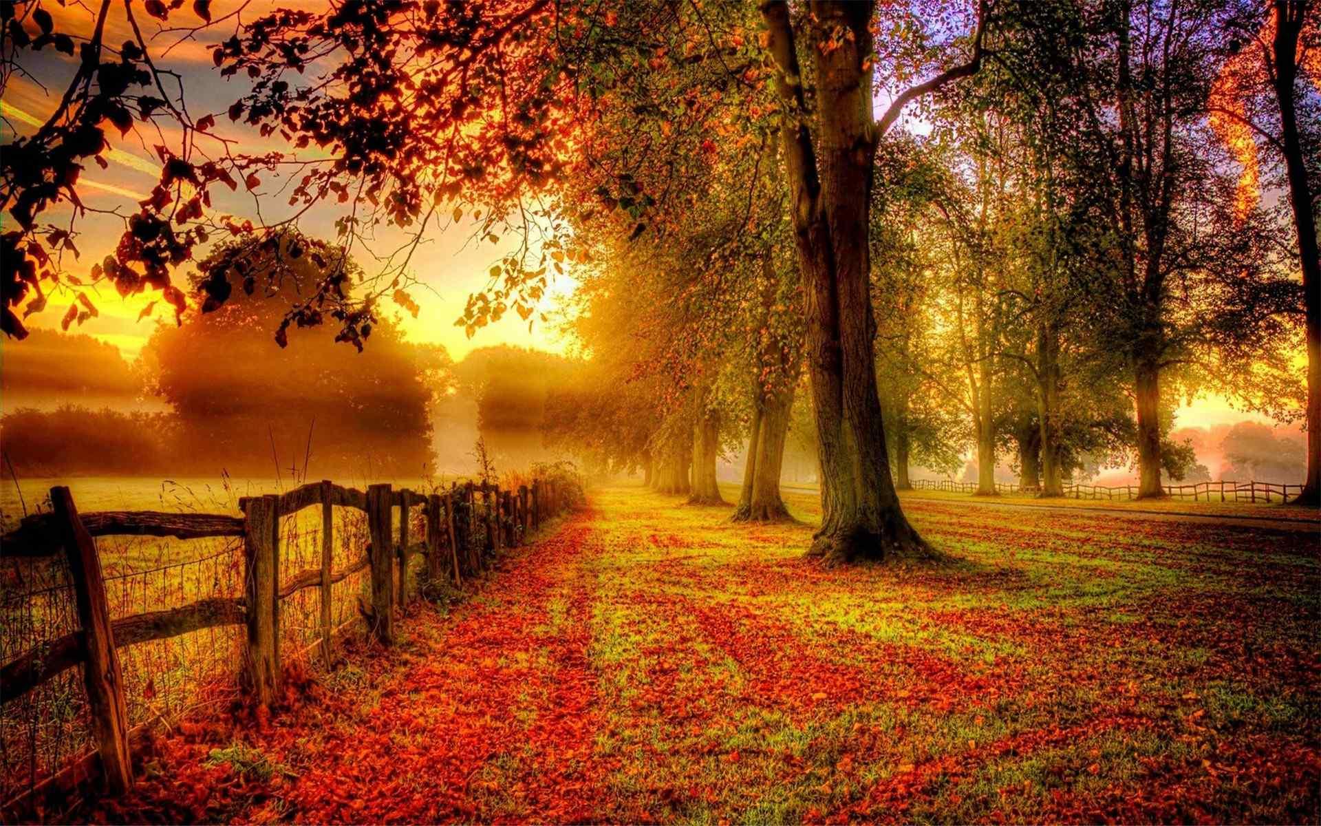 自然风景乡间四季唯美摄影高清电脑壁纸图片大全