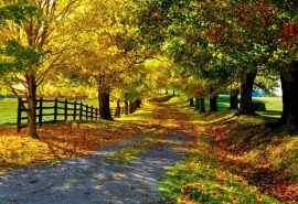 自然风景乡间四季唯美摄影高清电脑壁纸图片第二辑