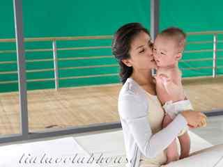 刘涛代言做最美妈妈唯美桌面壁纸(12辑)