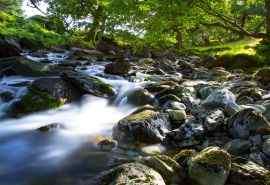清新山涧森林河流自然风景高清摄影桌面壁纸