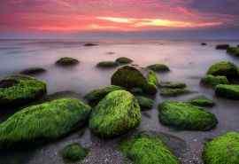 高清摄影海岸礁石
