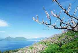 美丽清新的北海道