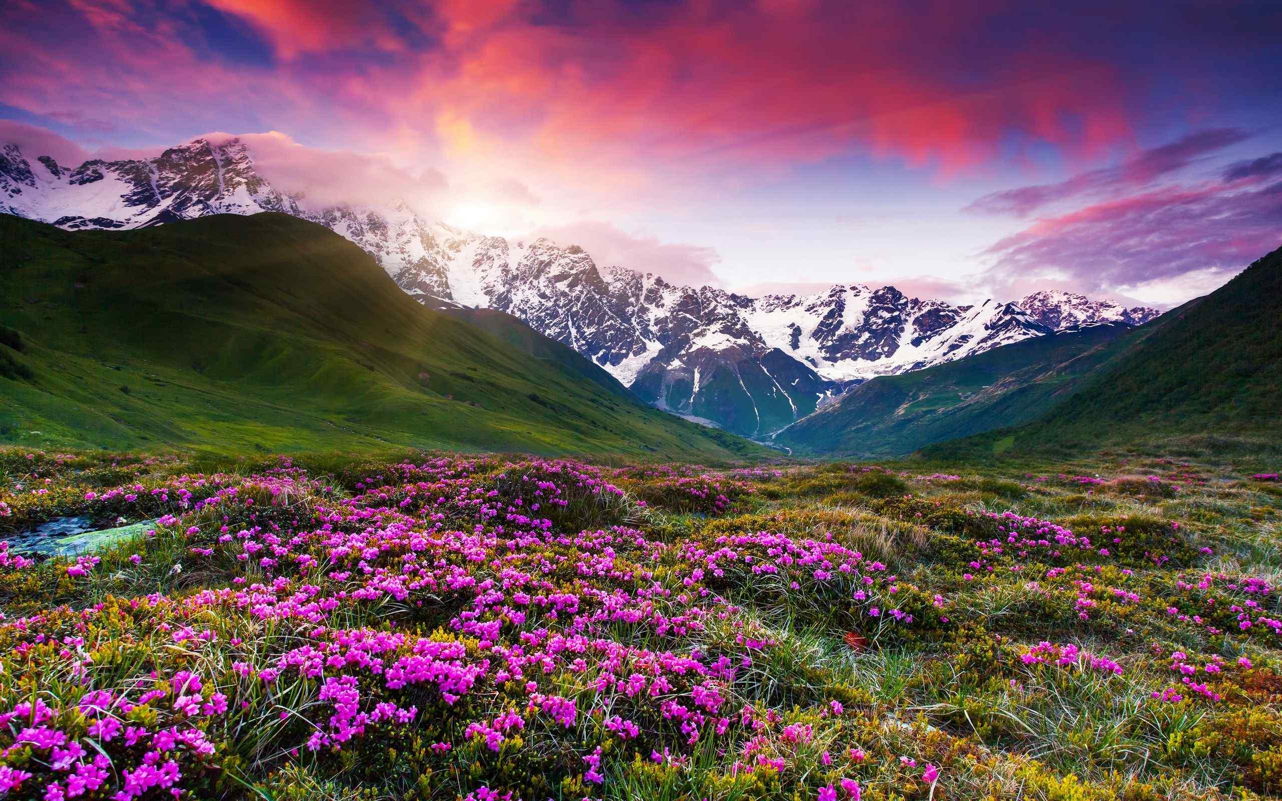 选绿色草原山脉风景电脑壁纸图片 第一辑图片