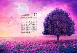 紫色唯美2016年11