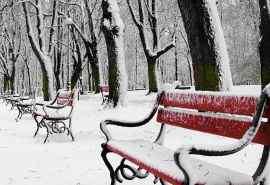 冬日美丽的雪景桌面壁纸图集