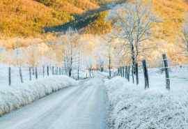 唯美的冬日雪景桌面壁纸图片下载
