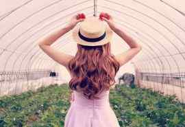 草帽女孩的清新唯美背影图片桌面壁纸