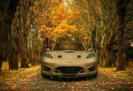 树林里帅气的跑车