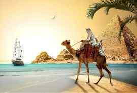 创意古埃及沙漠骆驼风景壁纸图片